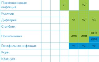 Календарь прививок для детей по возрасту